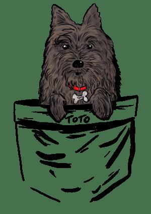 Polera unisexo personalizada con ilustración exclusiva de tu mascota